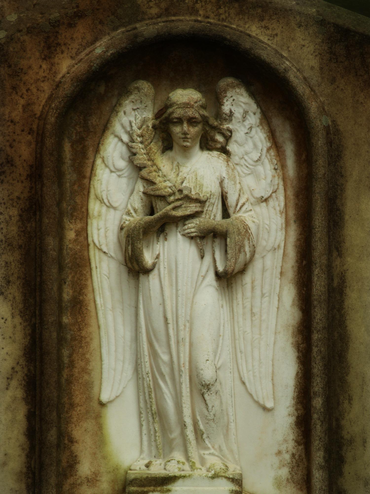 SAVANAH'S ANGEL #8