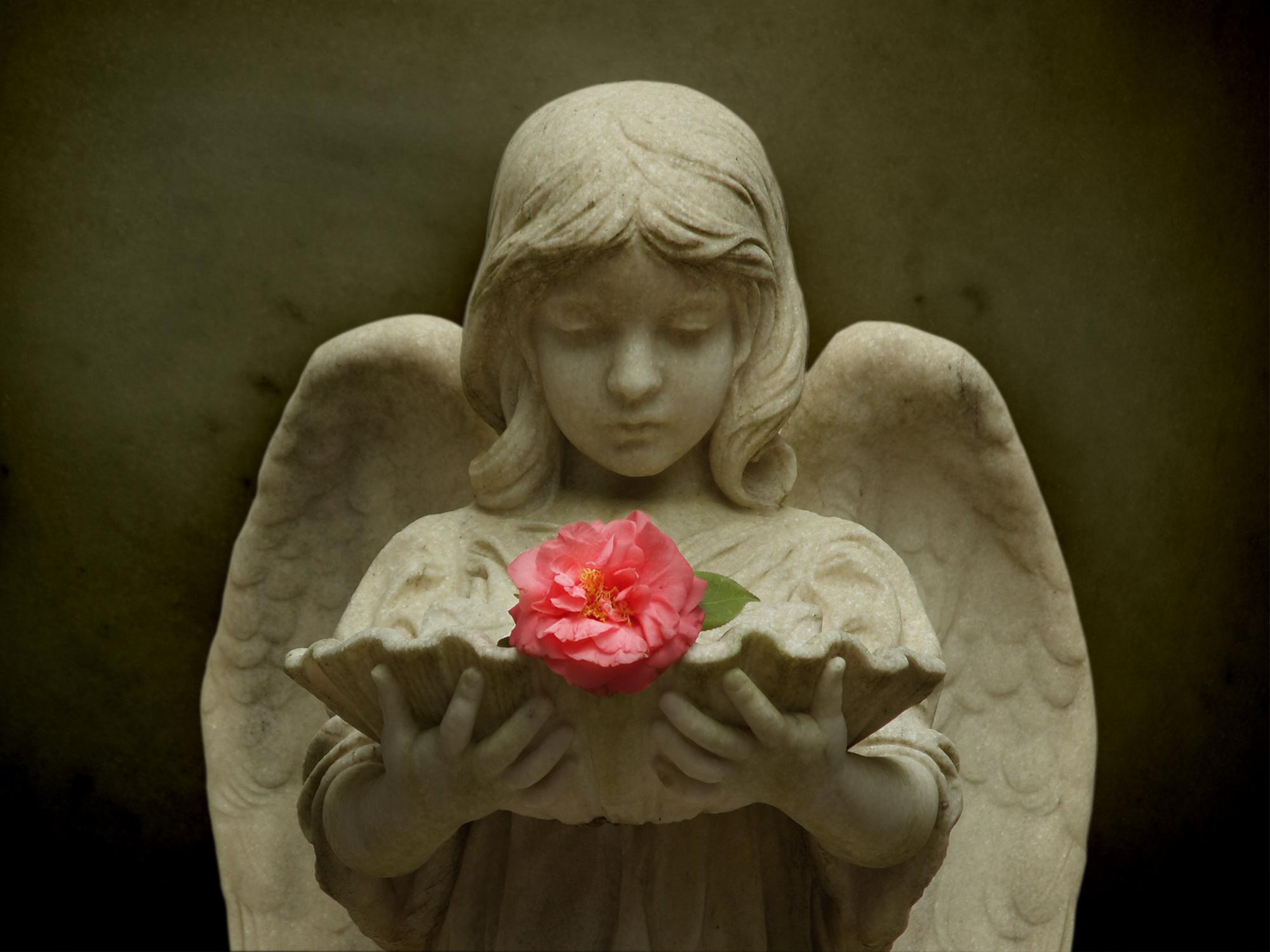 SAVANAH'S ANGEL #16